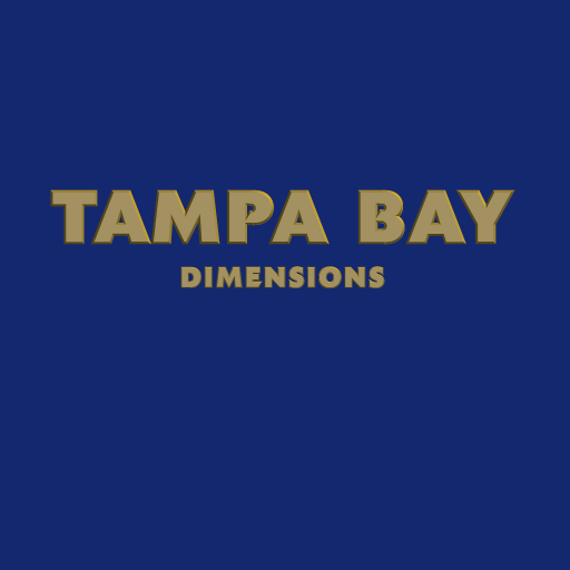 TAMPA BAY DIMENSIONS (Kindle Tablet - Tampa Shopping
