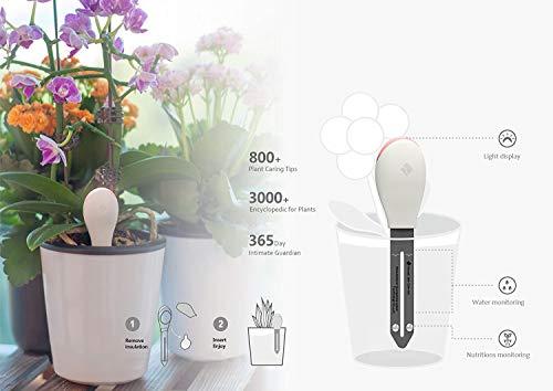 sPlant Soil Tester, Soil Water Moisture Fertilizer Meter, Soil Test Kit, Soil Pick Tool, Moisture Nutrition Measurement, for Indoor Potted Plants by sPlant (Image #1)