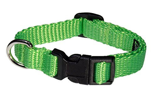 extra small neon dog collar - 9