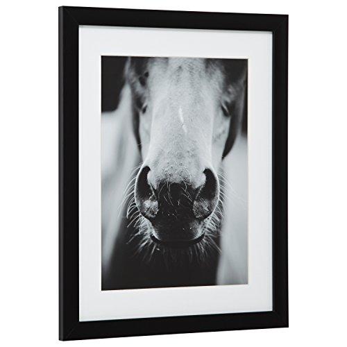 Modern Black and White Horse Nose Photo Framed Wall Art D cor – 18 x 22 Frame, Black