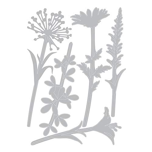 Tim Holtz Sizzix Flower Stems Thinlit Bundle - Wildflower Stems #1 and Wildflower Stems #2 by Tim Holtz (Image #3)
