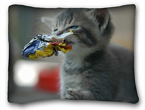 Generic Personalized ( Nature Fields paper cats garbage kittens depth of field Nature Fields ) Pillow Cushion Case Cover One Sides Printed 20x26 Inches suitable for X-Long Twin-bed