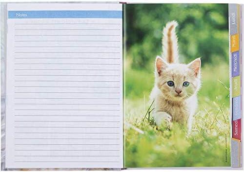 Visuel Chaton Sweet Life Oberthur Couverture cartonn/ée rigide 15,5x22cm 1 Cahier de textes