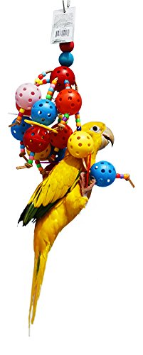 Birds LOVE Balls of Fun for Small and Medium Size -