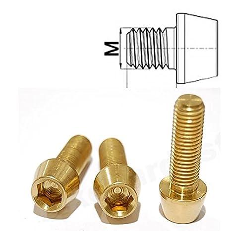 Innensechskant konischer Kopf Gold Titan Schraube M5 x 30mm