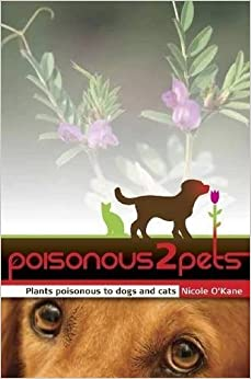 Common Poisonous Items To Dogs And Cats