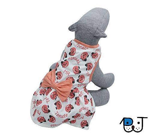 Roupa para Cães e Gatos Vestido Tomatinhos com Laço G