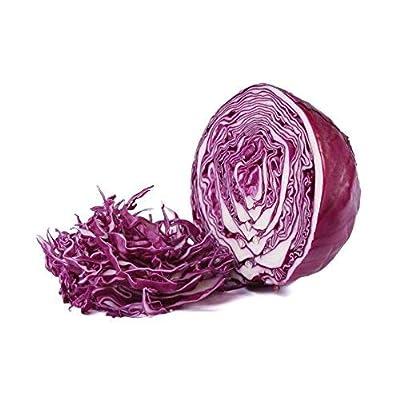 Red Acre Cabbage Seeds, 250+ Premium Heirloom Seeds, (Red/Purple), Brassica oleracea, (Isla's Garden Seeds), 90% Germination RatesNon Gmo Organic Survival Seeds, Highest Quality. : Garden & Outdoor