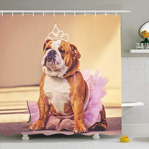 Ahawoso Shower Curtain 72x78 Inches Face Funny Cute Bulldog Dressed Pink Tutu Princess Dog Parks Costume Pet Retro Baby Tiara Waterproof Polyester Fabric Set with Hooks ()