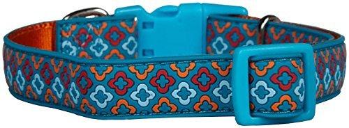 Aspen Pet Products Petmate Rubber Collar, orange Geo, 3 4 x 14-20 by Aspen Pet