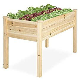Best Choice Products 46x22x30in Raised Wood Planter Garden Bed Box Stand for Backyard, Patio - Natural 5 SPACIOUS GARDENING BED: Designed with a nearly-4-foot-long bed deep enough to ensure your plants and vegetables can breathe and grow healthy DURABLE COMPOSITION: Made of 0.75-inch-thick, weather-resistant Cedar wood, this bed is built to last through the seasons ERGONOMIC STRUCTURE: Stands 30 inches tall, making it perfect for those who struggle to bend down or lean over while gardening