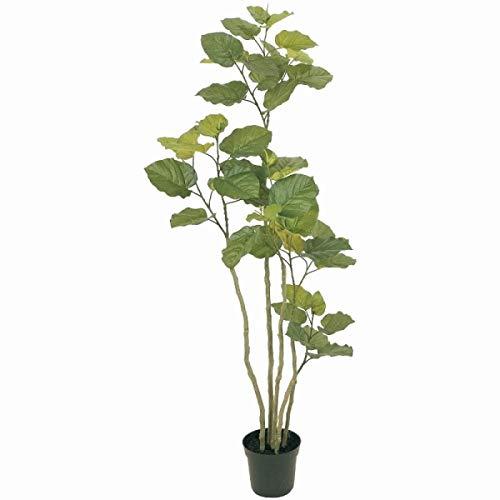 人工観葉植物 ウンベラータ 高さ165cm fg5227 (代引き不可) インテリアグリーン 造花 B07STGW6GS
