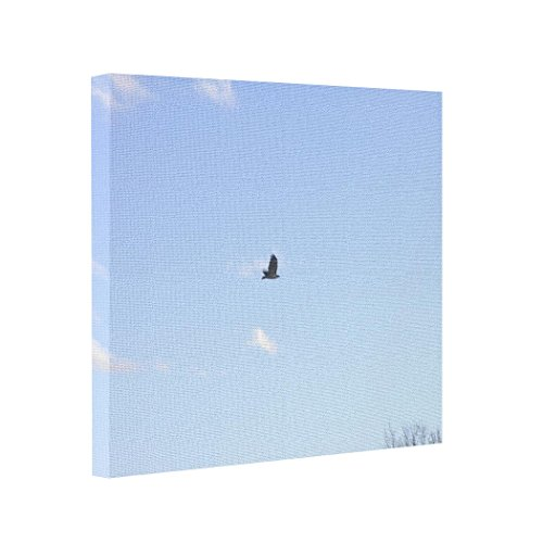 BUCKIE IY Canvas Picture Frames Red Tailed Hawk In Flight Transfer Photos To Canvas