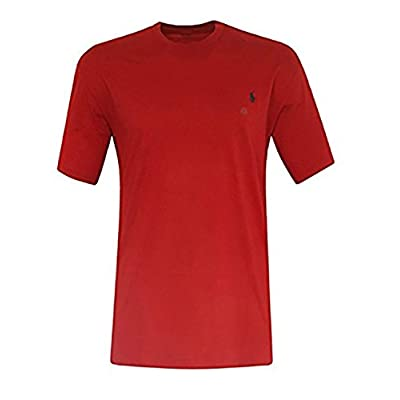 Top Polo Ralph Lauren Men's Big & Tall Pony Logo Crew Neck Jersey T-shirt supplier