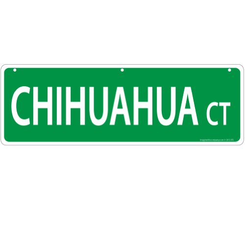 imagine-this-chihuahua-street-sign