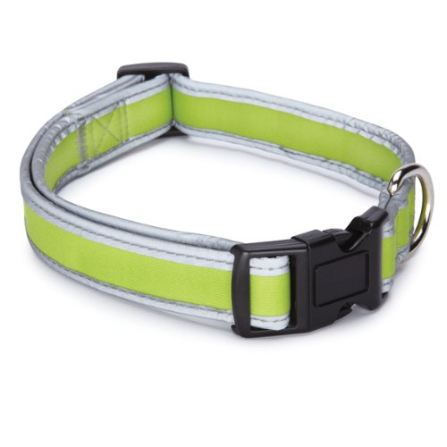 Casual Canine Nylon Reflective Neoprene Dog Collar, 14 to 20-Inch, Parrot, My Pet Supplies