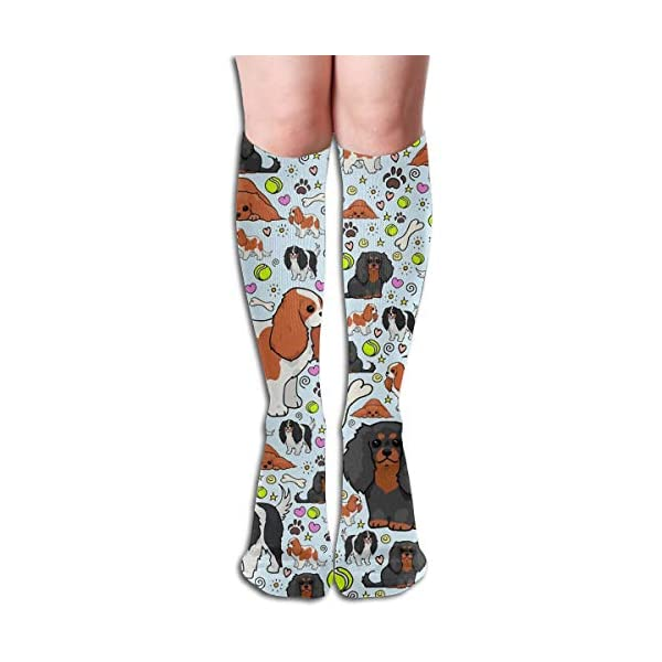 Compression Tight Novelty Colorful Knee High Travel Nursing Flight CavalierKingCharlesSpaniel Pattern Socks For Unisex 1
