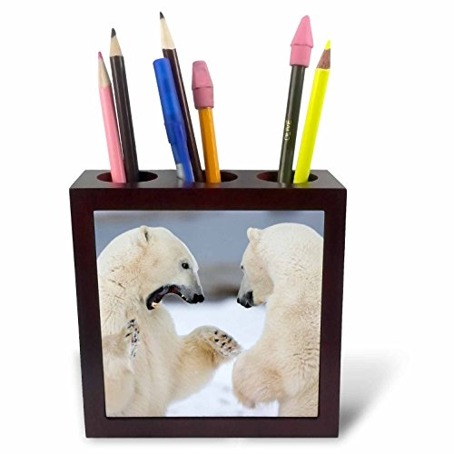 Churchill Tile (3dRose ph_209799_1 Polar Bears Ursus Maritimus Sparring Churchill MB Tile Pen Holder, 5