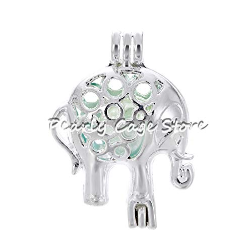 1pc Silver Dragon Carriage Elephant Heart Pearl Cage Bead Cage Essential Oil Diffuser Locket Pendant Jewelry Making Oyster Pearl
