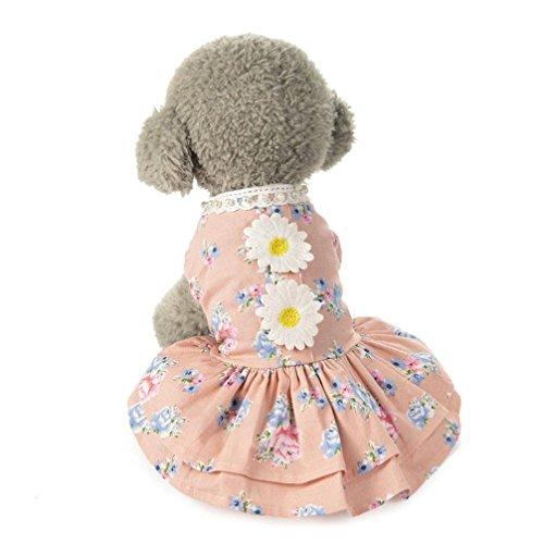 - Hot Sale!Big Promotion!Dog Clothes❤️ZYEE❤️Dog Cat Bow Tutu Dress Lace Skirt Pet Puppy Dog Princess Costume Apparel Clothes 2018 (XL, Pink)