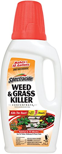 Spectracide HG-96390W-1 Weed and Grass Killer Concentrate...