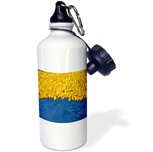 3dRose TDSwhite – Miscellaneous Photography - Yellow Rubber Ducks Float Blue Lake Water - 21 oz Sports Water Bottle (wb_285378_1) by 3dRose