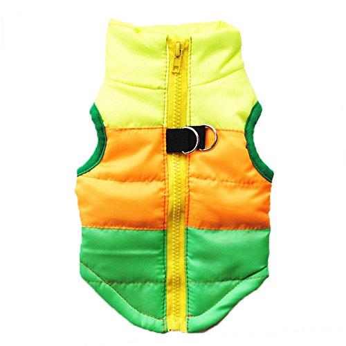 Invernali Di Maglia Padre Ponticelli M Cane Xs Da Con Colorblock Verde Vestiti Giubbotto Compagnia Felpe Di 11 Natale Jacket Cappuccio Cucciolo Au 14 Vestito Maglione wqcUxZ74xv