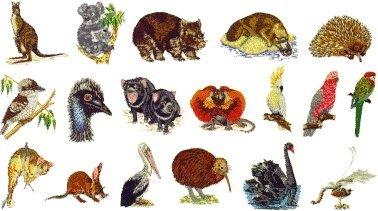 Brother SA346 Embroidery Memory Card No. 46 Australian Anima