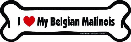 Imagine This Bone Car Magnet, I Love My Belgian Malinois, 2-Inch by 7-Inch (Belgian Malinois Sticker)