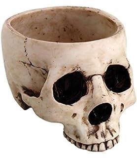 675 inch ceramic open skeleton skull figurine medium bowl beige - Halloween Skull