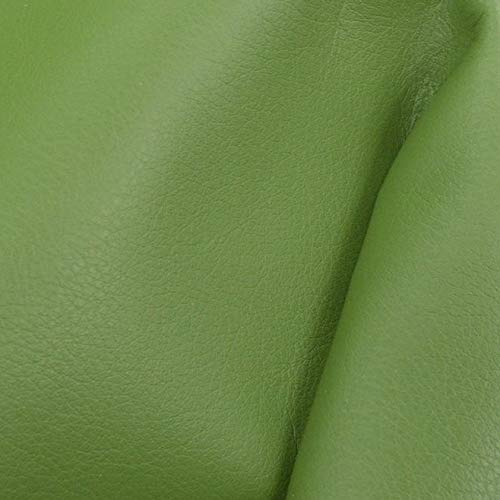 "Glorious Palm Green""Signature"" Leather Cow Hide 8"" x 10"" Pre-Cut 2-3 oz"