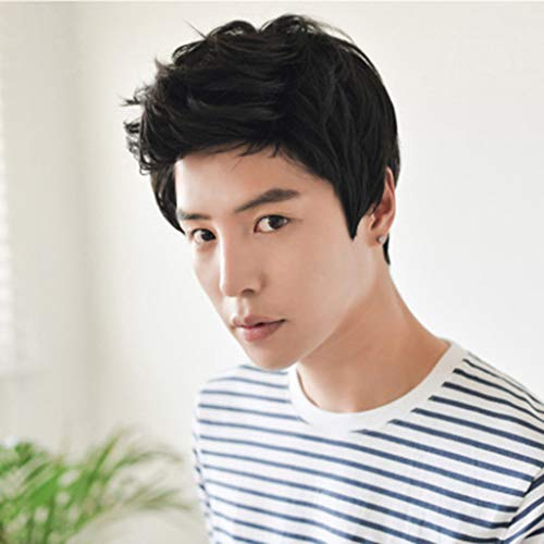 Fashion Natural Men Boy Short Black Synthetic Hair Full Wig Cosplay Party Rose Net Wigs (a)