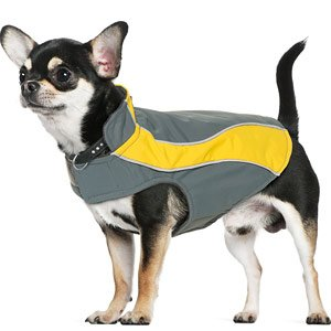 Kakadu Pet Explorer Nylon Fleece Reflective Dog Coat, 10″, Sun (Yellow), My Pet Supplies
