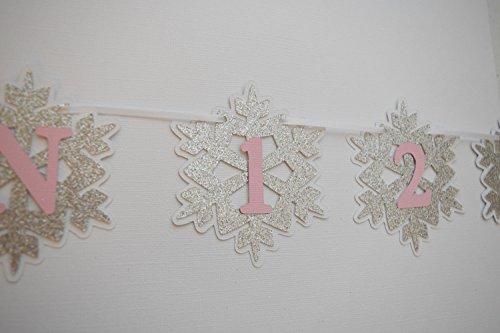 Monthly Photo Banner, 1st Birthday Decor, Winter Wonderland Banner, Winter Onderland Theme, Snowflake Monthly Photo Banner, Birthday Banner]()