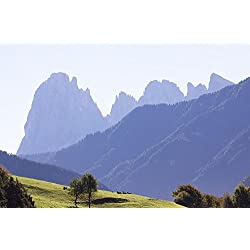 LAMINATED 36x24 Poster: Dolomites Italy South Tyrol Landscape Sassolungo Mountain Alpine Rock Alm Meadow Cow Cow Pasture