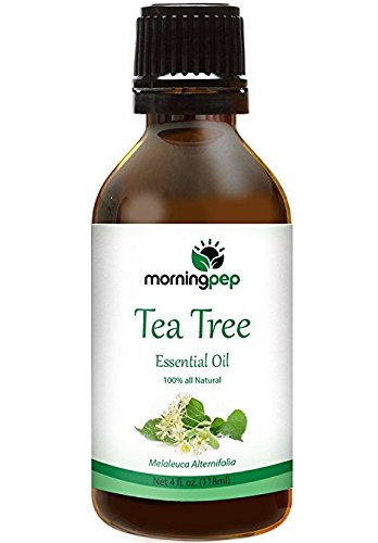 TEA TREE OIL 4 OZ by Morning Pep Large