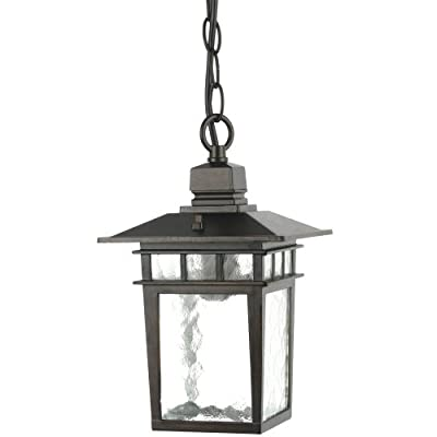 Yosemite Home Decor 2072PNIORB Dante 1-Light Outdoor Pendant Light with Water Glass Shade