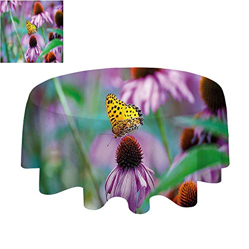 (SATVSHOP Tablecloth Heavy Weight Dust-Proof Table Cover for Kitchen Dinning Decoration-70Inch-Garden Monarch Butterfly on Coneflowers Wildlife Bugs Plants Ural Scenery Photo Fuchsia Yellow Green.)