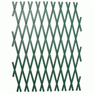 Triuso – pared enrejado verde 60 x 180 cm Plástico resistente a la intemperie enrejado Rank ayuda pared Rank Rank ayuda pared ayuda de escalada
