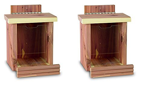 Pennington Cedar Squirrel Snacker Feeder Amish Made in the USA (2-Feeders) by Pennington
