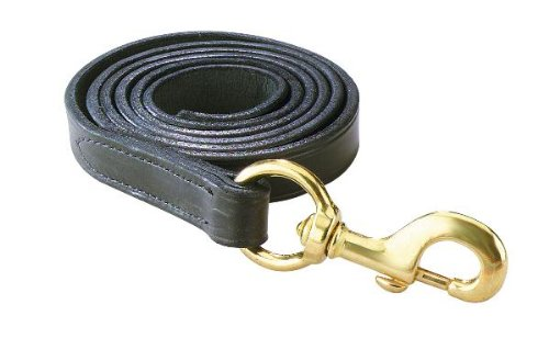 Mary Brass - Perri's Leather Lead with Snap, Black with Brass Snap, 6-Feet