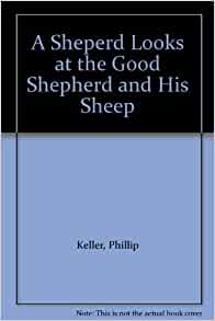 a sheperd looks at the good shepherd and his sheep