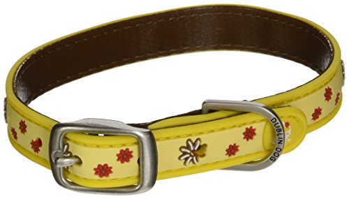 All Style 11-Inch by 14-Inch No Stink Dog Collar, Small, Sun Spot