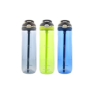 Contigo Autospout Ashland Water Bottle, 24oz - Stormy Weather/Vibrant Lime/Monaco (3-Pack)