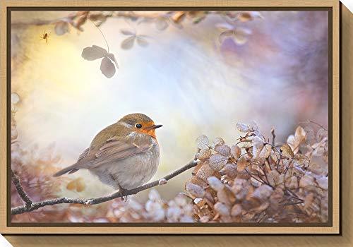 Amanti Art Robin on Dreams by Teuni Canvas Art Framed
