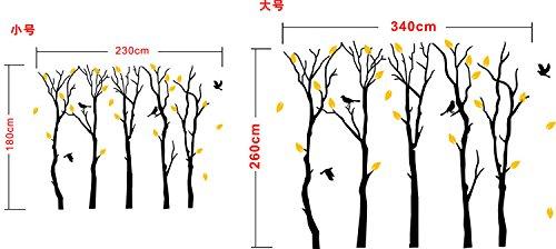 Fymural Large 5 Poplar Trees Wall Stickers Art Mural Wallpaper for Kid Baby Nursery Livingroom Background Vinyl Removable DIY Decals 133.9x102.4,Black by Fymural (Image #3)