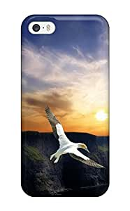 Rugged Skin Case Cover For Iphone 5/5s- Eco-friendly Packaging(wing Flight)