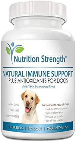 Nutrition Strength Immune Support for Dogs Plus Antioxidant, Reishi, Shiitake, Maitake, Turkey Tail Mushrooms for Dogs, with Coenzyme Q10, Nutritional Support for Cancer in Dogs, 120 Chewable Tablets