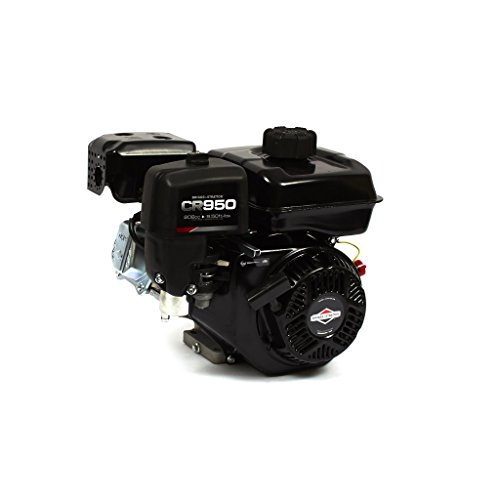 Briggs and Stratton 13R232-0001-F1 Engine ()