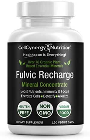 Keto Electrolytes Fulvic Acid Trace Minerals Supplement – Non-GMO, Vegan - Fulvic Humic Mineral Blend - Energy, Detox, Immunity, Focus – CellCynergy 120 Veggie Capsules